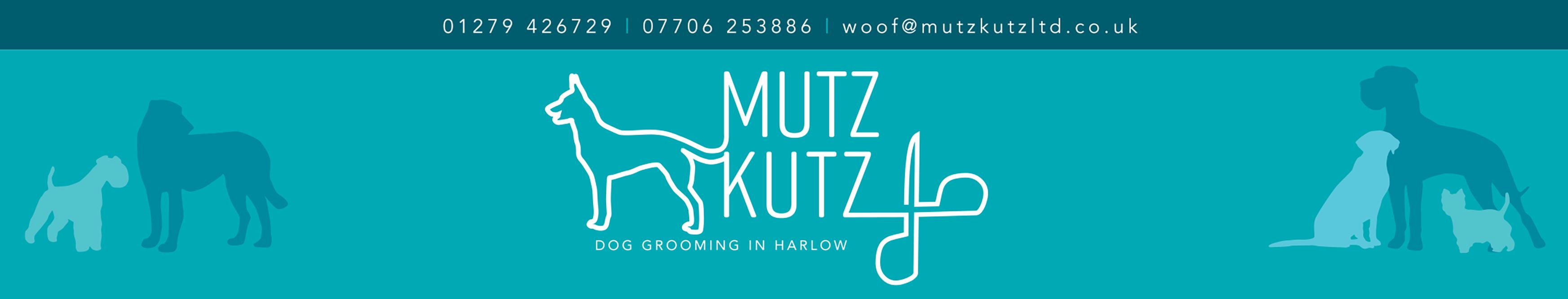 Dog Grooming Harlow